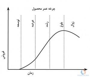 پاورپوینت چرخه عمر